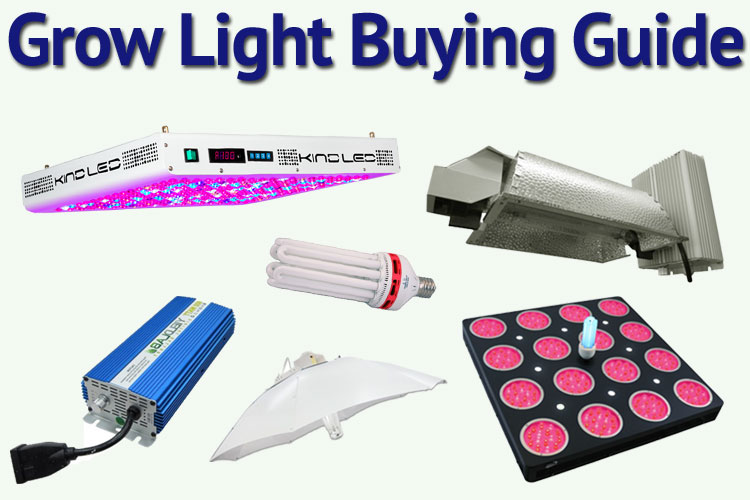 buying guide for best grow lights